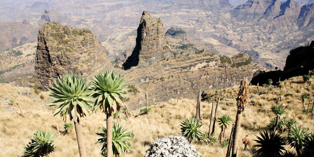 apertura etiopia-min